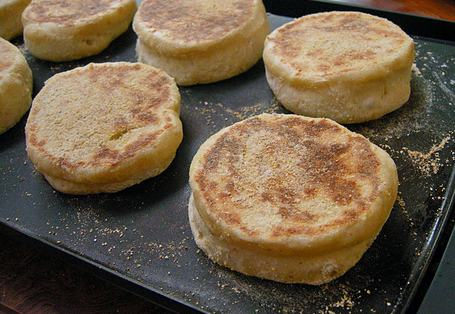 griddle-temperature-for-english-muffins-topelectricgriddles.com