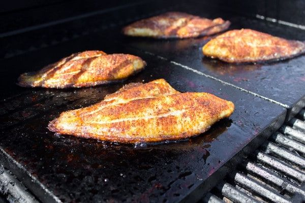 8-Easy-Tips-for-Cooking-Catfish-on-a-Griddle-Like-a-Chef